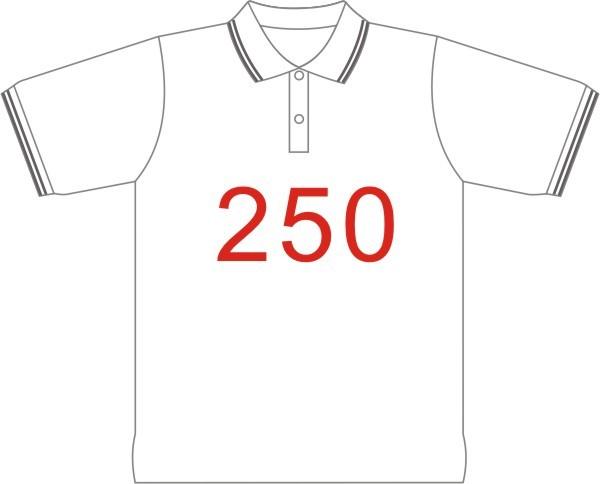 POLO衫-250